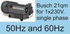 Vakuumpumpe 21m³/h, 2mbar, 240V für Einbettanlagen